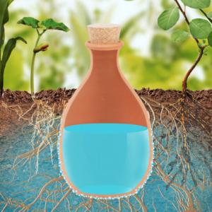 NEU!NEU!NEU! Olla, effektive Pflanzenbewässerung !!!Einführungspreis!!!